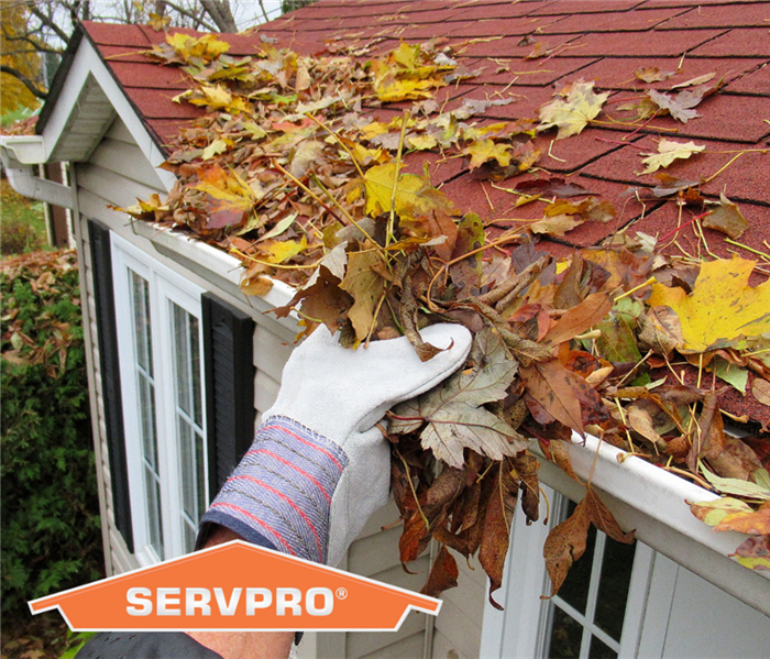 Gloved hand cleaning out gutters of home full of leaves. Orange SERVPRO logo in bottom left corner
