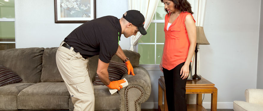 Springfield, KY carpet upholstery cleaning