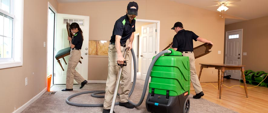 Springfield, KY cleaning services